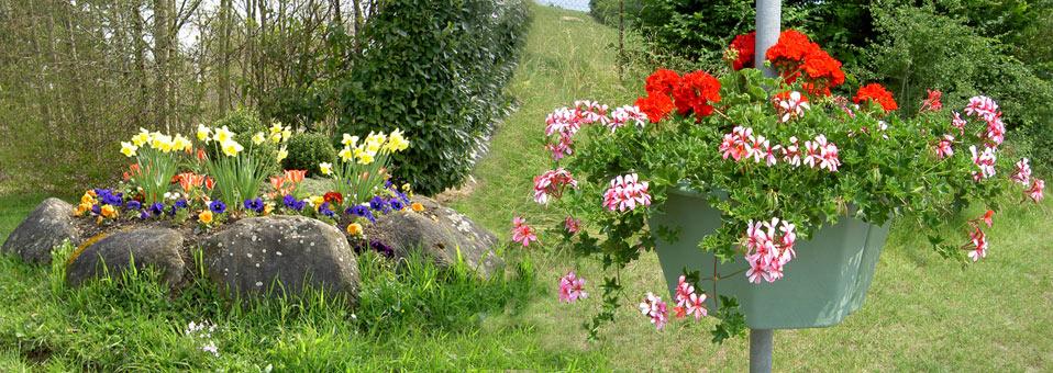 Blumenschmuck in der Gemeinde